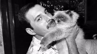 Freddie Mercury: The Great... image