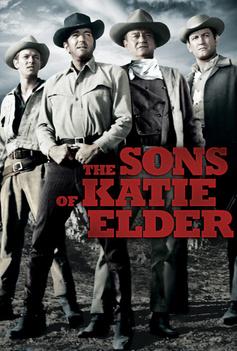 The Sons Of Katie Elder image