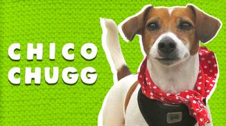 Chico Chugg image