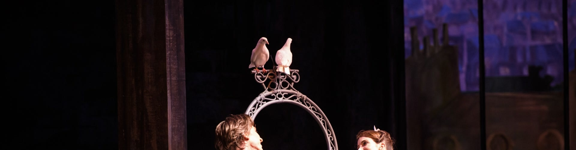 Watch Rhapsody/The Two Pigeons Online