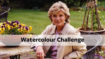 Watercolour Challenge