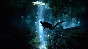 Gold Divers (Specials)