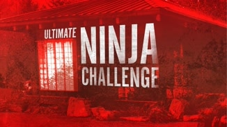 Ultimate Ninja Challenge image
