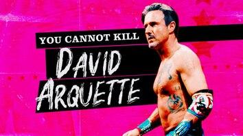 You Cannot Kill David...