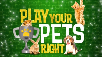 Play Your Pets Right