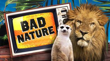 Bad Nature