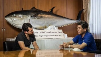 Eating Bluefin Tuna into Extinction