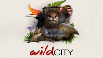 Attenborough - Wild City