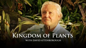 David Attenborough's Kingdom Of...