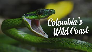 Colombia's Wild Coast