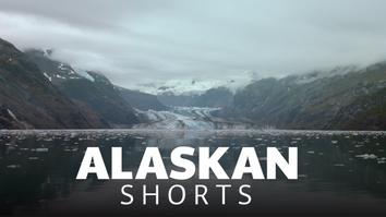 Alaskan Shorts