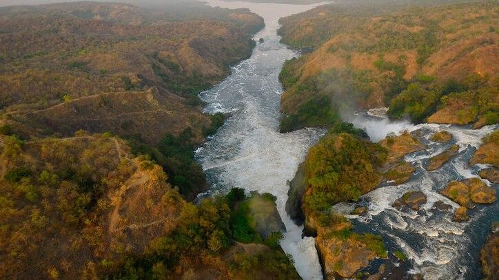 Watch Wild Nile Online