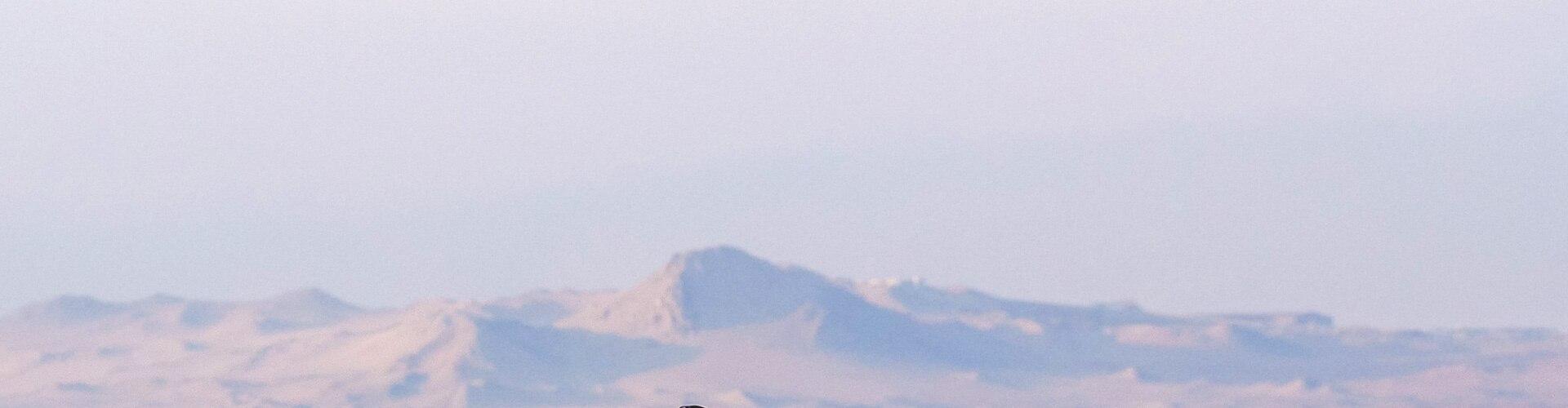 Watch Wild Peru: Andes Battleground Online