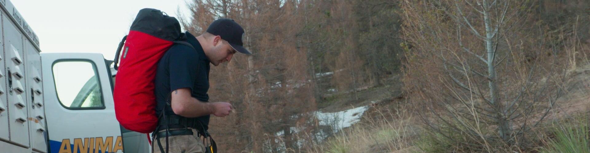 Watch Rocky Mountain Animal Rescue Online