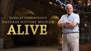 David Attenborough Natural History Museum Alive