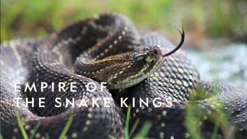 Empire Of The Snake Kings