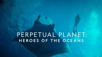 Perpetual Planet: Heroes Of The Oce