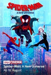 Sky X Fiction - Spider-Man: A New Universe