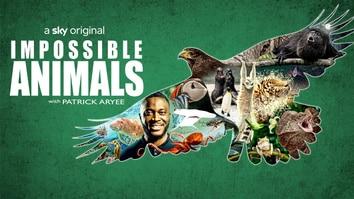 Impossible Animals