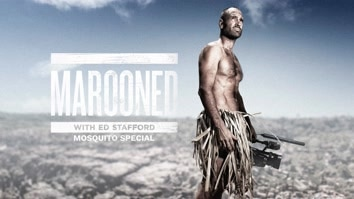 Marooned With Ed Stafford: Mosquito Special