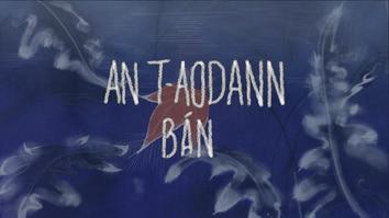 An t-Aodann Bàn