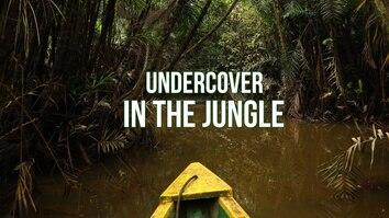 Undercover In The Jungle
