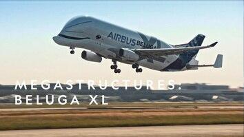 Megastructures: Beluga XL
