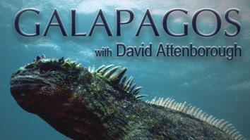 David Attenborough's Galapagos
